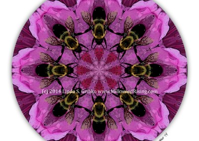 Bumblebee Waltz
