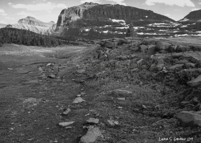 Logan Pass No. 2