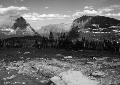 Logan Pass No. 8