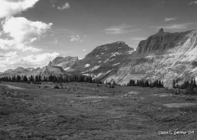 Logan Pass No. 12