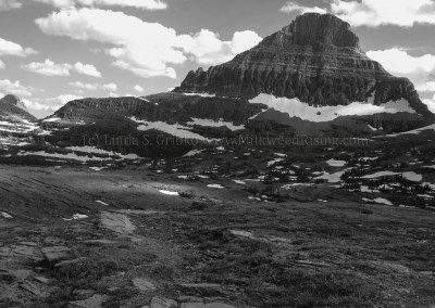 Logan Pass Series No. 22