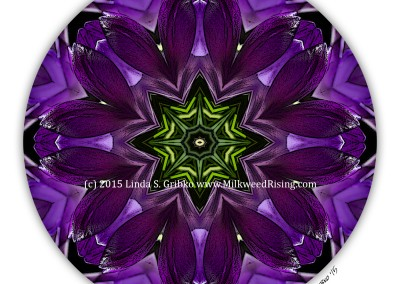 Purple Chalice