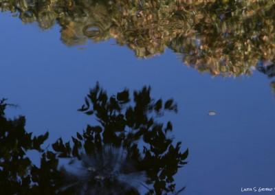 Antietam Creek Impression