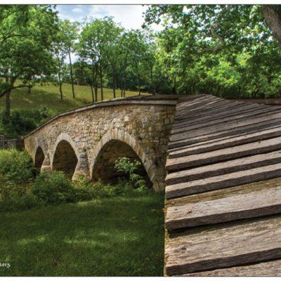"""""""Beautiful Bottleneck"""". Burnside Bridge and the witness tree."""